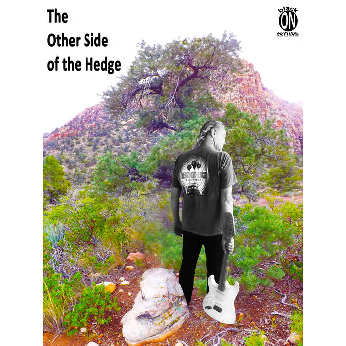summary the other side of the hedge Please thumbs up if you like this video :) audio book, audiobook, audio-book.