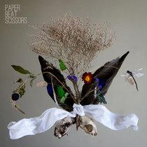 Paper Beat Scissors cover art
