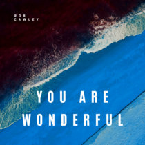 You Are Wonderful cover art
