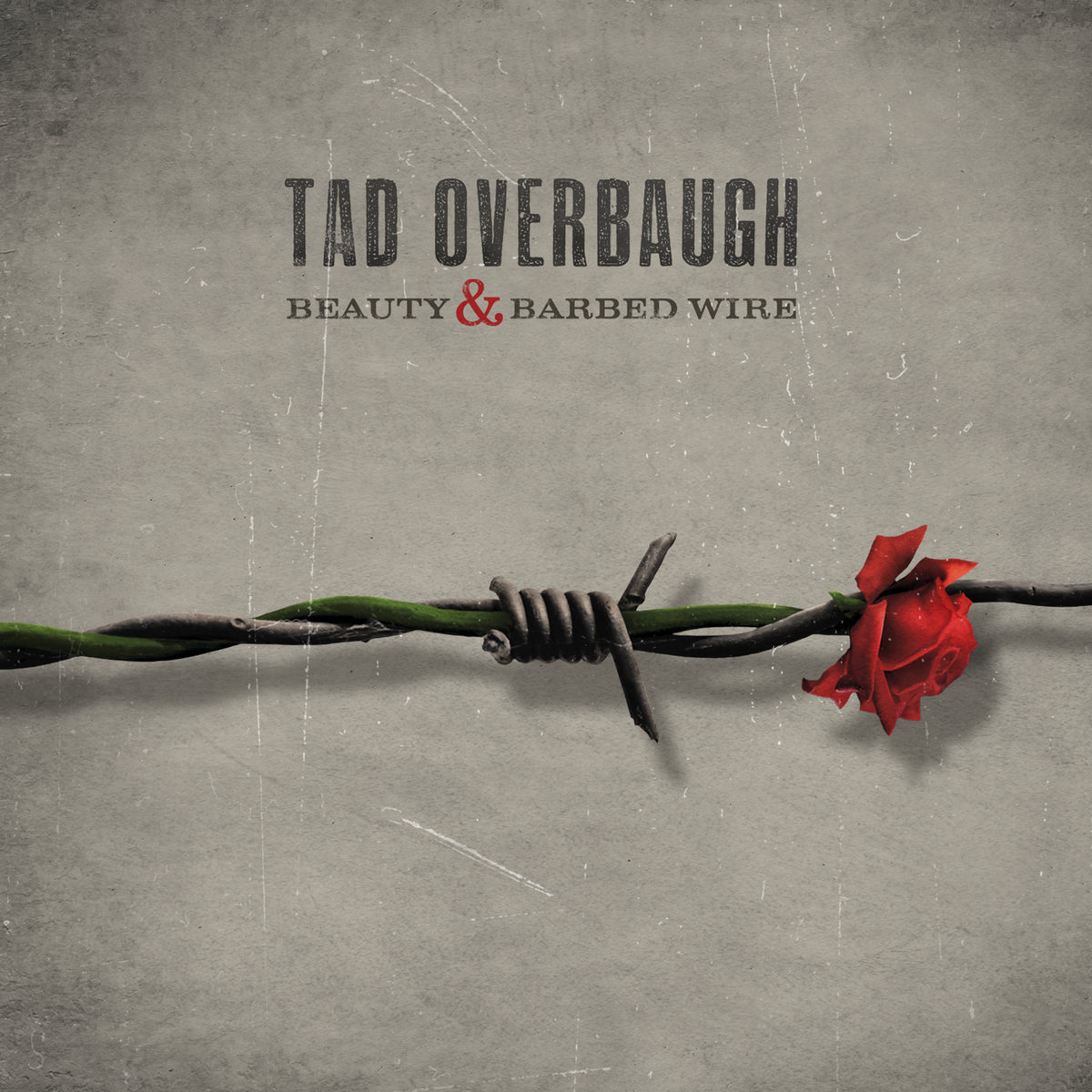Beauty & Barbed Wire | Tad Overbaugh