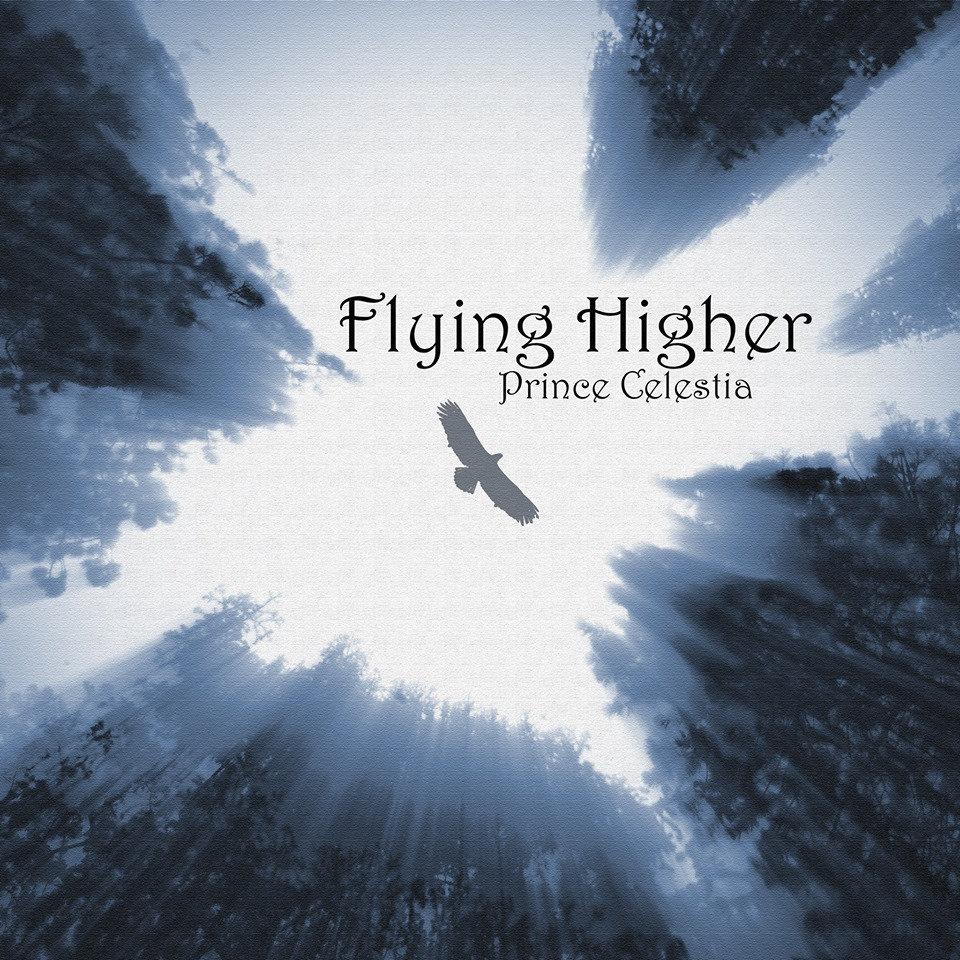 Get e-book Flying Higher