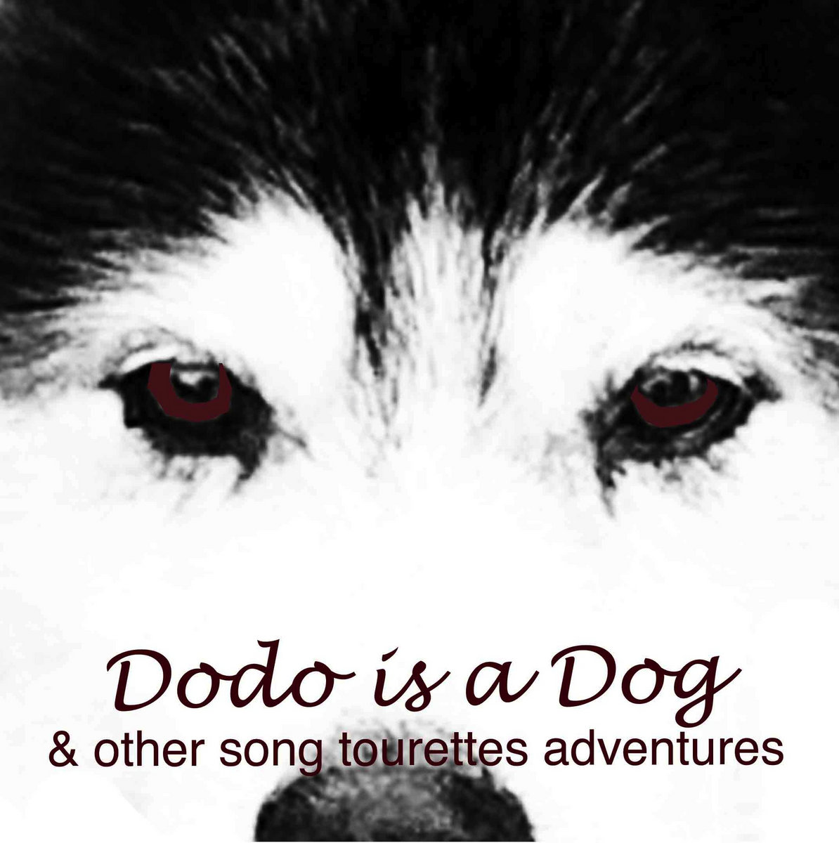 DODO IS A DOG [and other song tourettes adventures