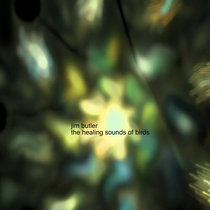 The Healing Sounds of Birds cover art