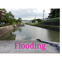 Flooding cover art
