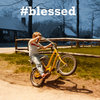 #blessed (2014) Cover Art