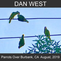 Parrots Over Burbank, CA  August 2019 cover art