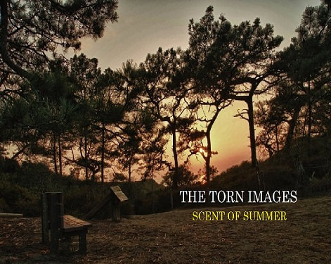 Scent of Summer by The Torn Images