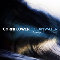 Oceanwater, Feat. Jeff Pevar [Single] cover art