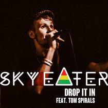 Drop It In (feat. Tom Spirals) cover art