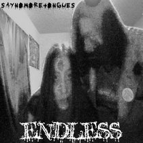 Endless cover art