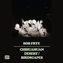 Chihuahuan Desert / Birdscapes cover art