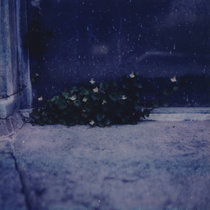 The Endless Sadness of the Shoreless Heart cover art