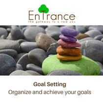 Goal Setting - Organize and achieve your goals cover art
