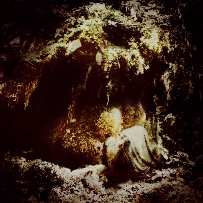 Wolves In The Throne Room New Album