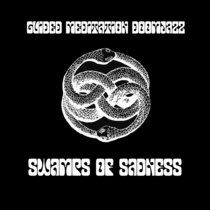 Swamps of Sadness cover art