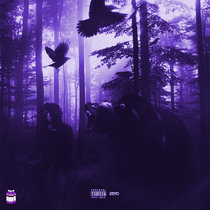 FREE 6LACK | Chopped & Screwed cover art