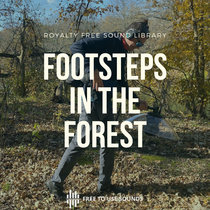 Footsteps In The Forest Sound Effects   Footsteps Sounds cover art