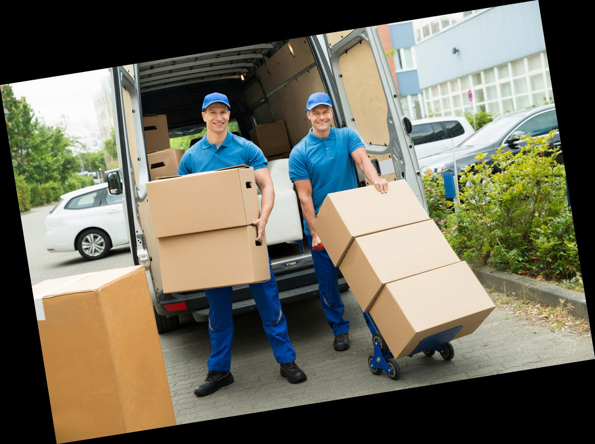 Tel 1-855-789-2734 go pro movers reviews Mass    Monica Campbell