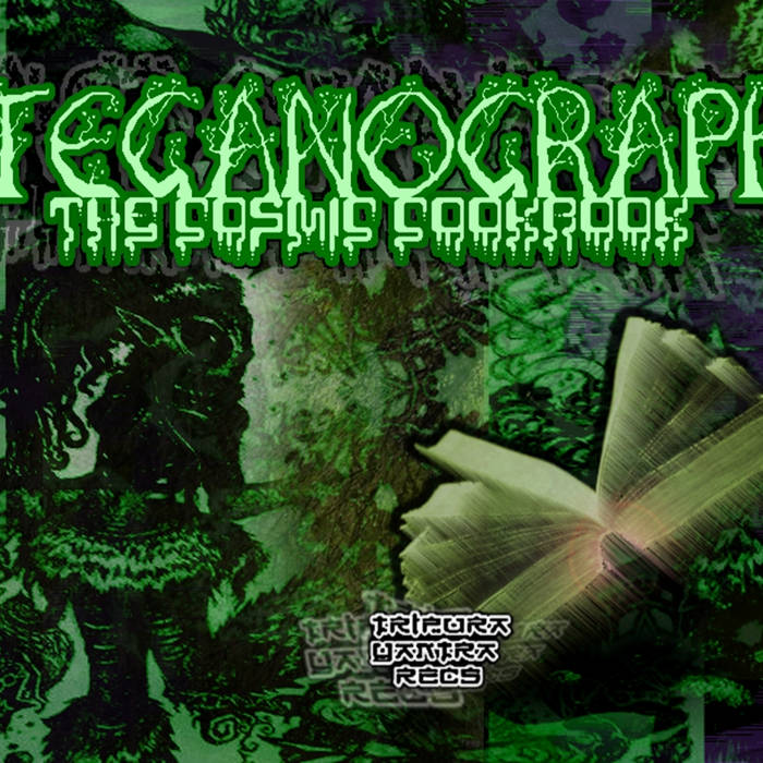 Steganography - The Cosmic Cookbook 2013 - Tripura Yantra Records cover art