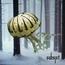 Medusa / SUBSIST.73D cover art