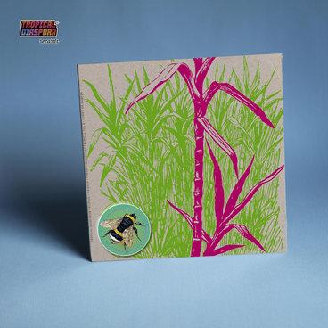 "Bugiganga Tropical Vol.3 - 7"" w/ Double Cover main photo"