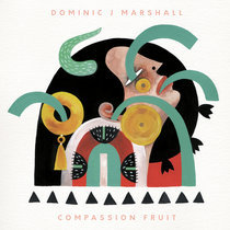 Dominic J Marshall - Compassion Fruit cover art