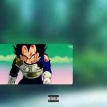 Vegeta cover art