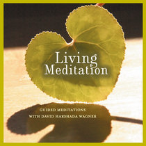 Living Meditation - Guided Meditations with David Harshada Wagner cover art
