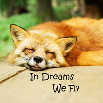 In Dreams We Fly cover art