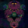 OSOM - Lubra Instincts Cover Art