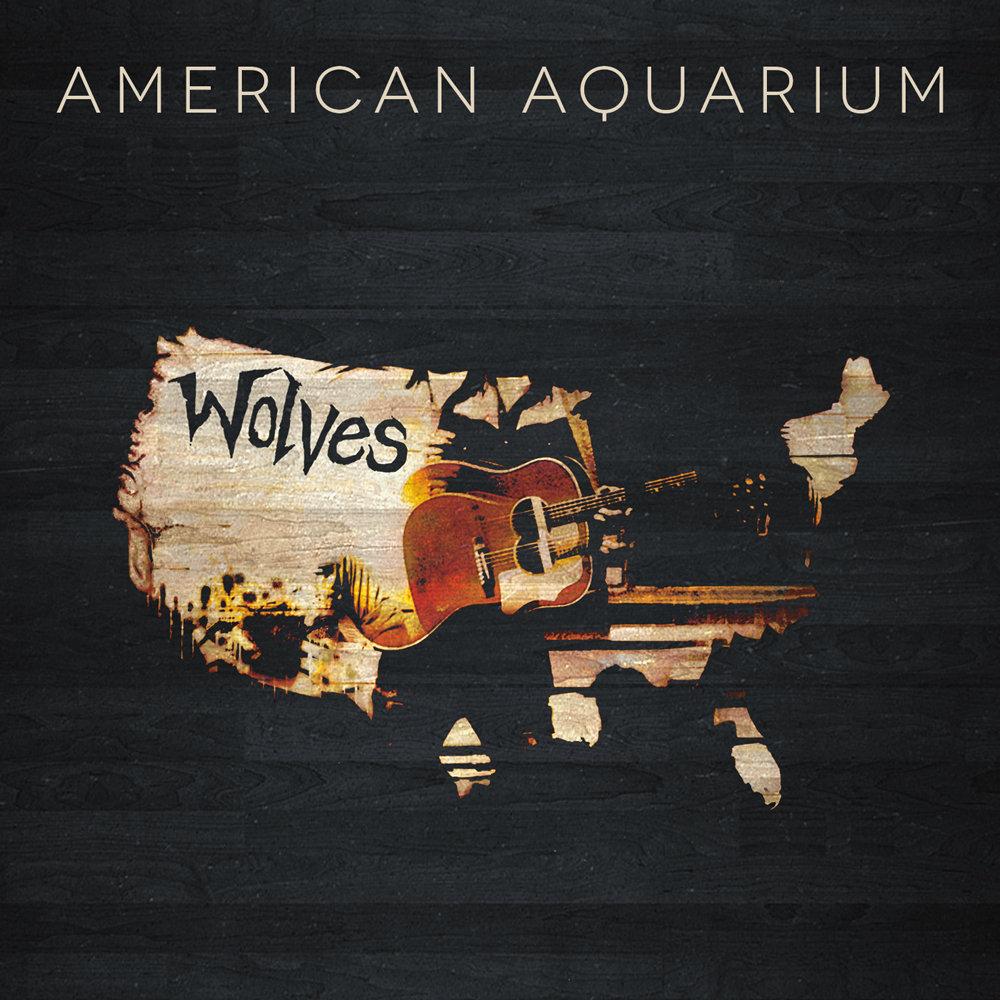 Znalezione obrazy dla zapytania american aquarium band