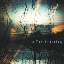 In The Branches cover art