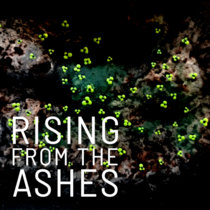 Rising From The Ashes cover art