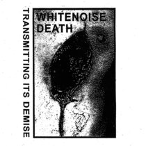 Transmitting Its Demise cover art