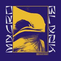 ibis valley cover art