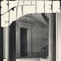 Swan's Chamber cover art