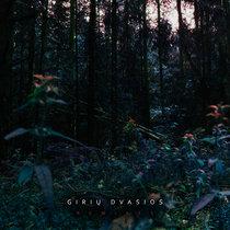 Giriu Dvasios - Remixes cover art