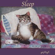 Sleep cover art