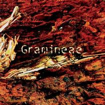 Gramineae cover art