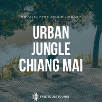 Jungle In The City  Morning Ambience Chiang Mai Thailand cover art