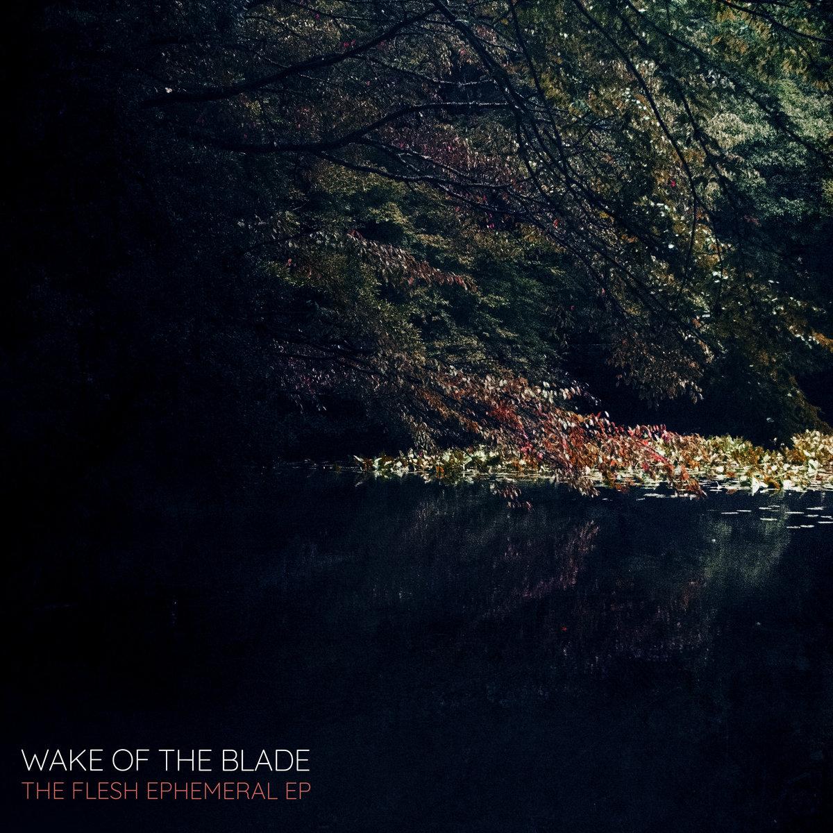 https://wakeoftheblade.bandcamp.com/releases
