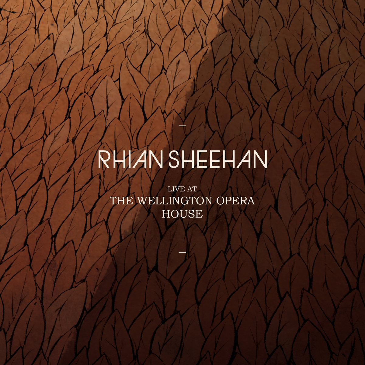 live at the wellington opera house stories from elsewhere   rhian sheehan  rh   rhiansheehan bandcamp