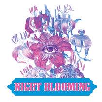NightBlooming cover art