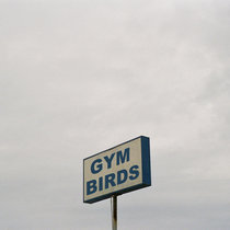 Gym Birds (Thermos Version) cover art