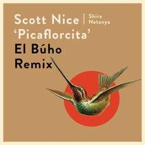Picaflorcita (El Buho Mix) cover art