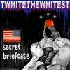 Secret Briefcase Cover Art
