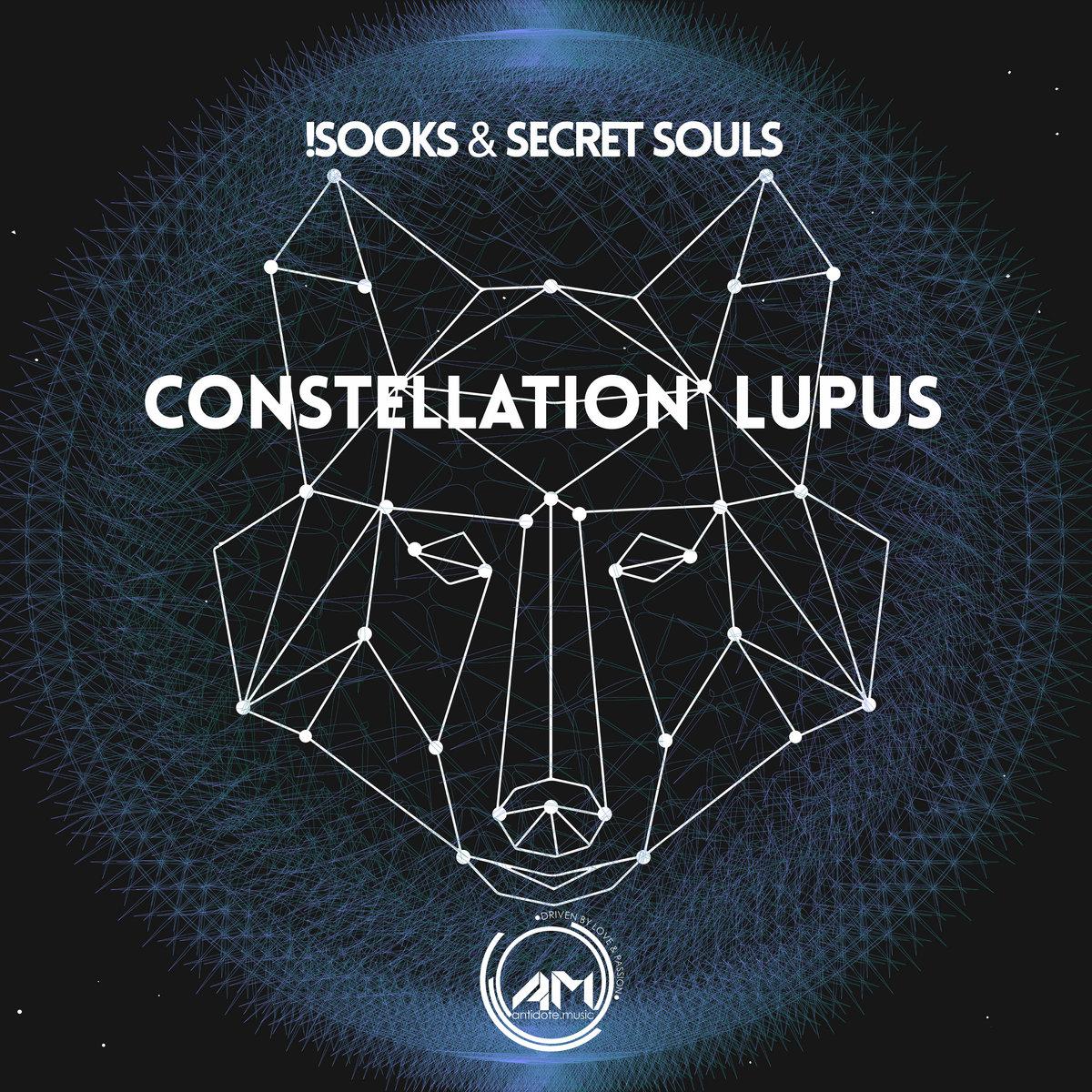 Constellation Lupus Antidote Music