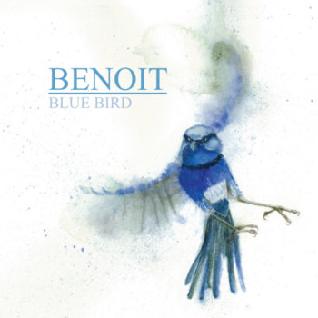 Blue Bird by Benoit