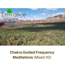 Chakra Guided Frequency Meditations (Mixed VO) cover art