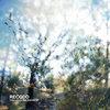 Crépuscule Des Libertés EP Cover Art